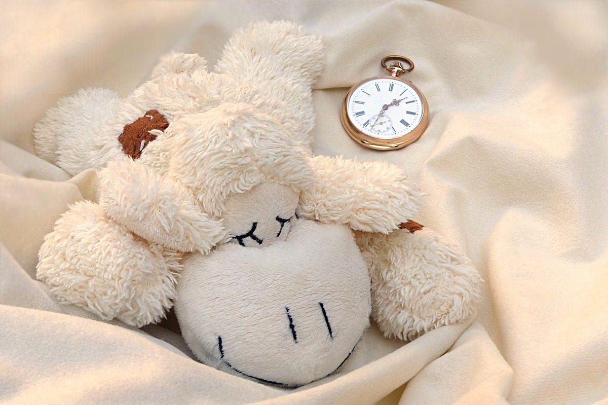 schlafen kuscheln
