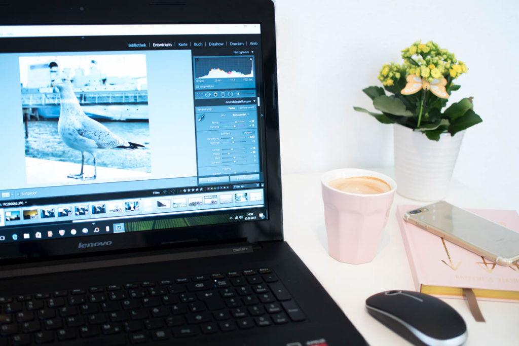 Bildbearbeitung mit Lightroom Schreibtisch Laptop Knipsakademie