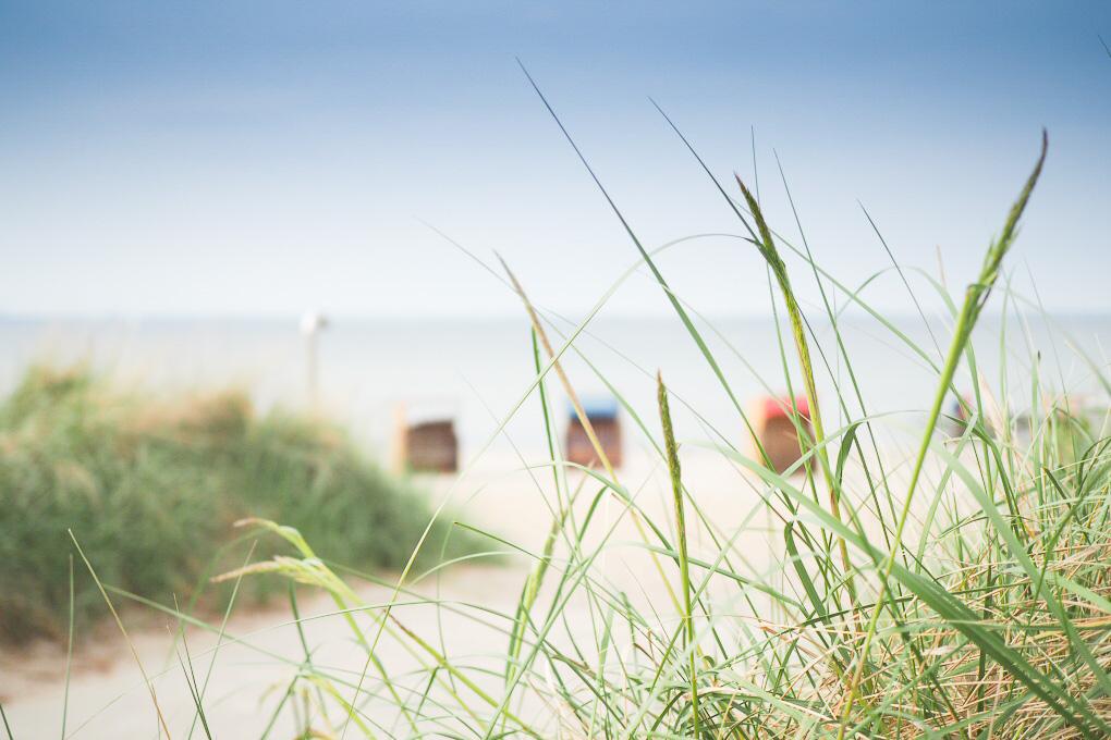 strand ostsee strandkoerbe getrennt in den urlaub