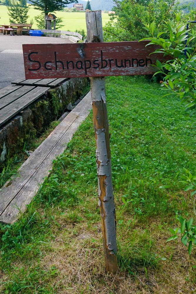 Schnapsbrunnen baiersbronn moutainbiketour schwarzwald