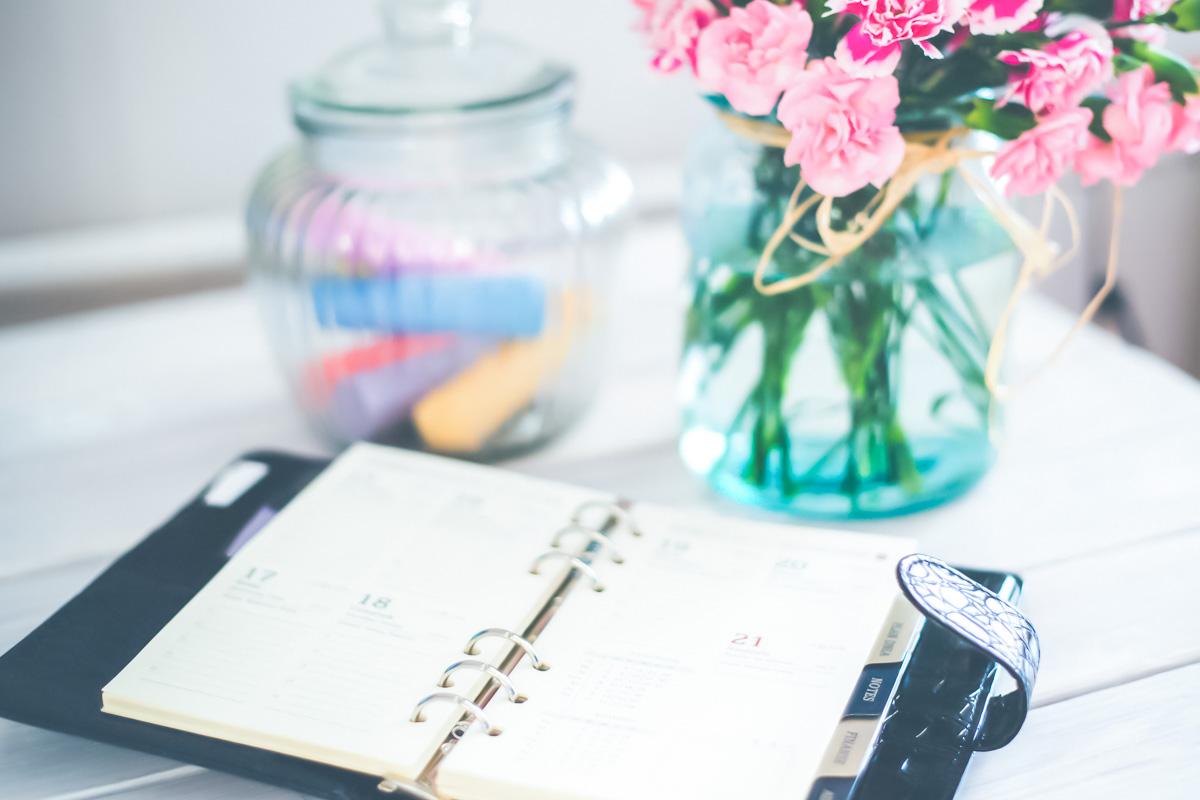 organizer kalender terminplaner