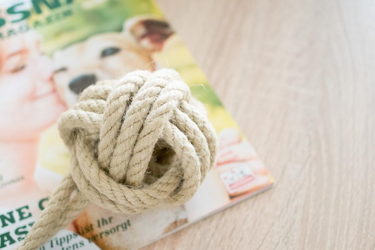 Fressnapf Magazin DIY Hundespielzeug Tau Ball Affenfaust