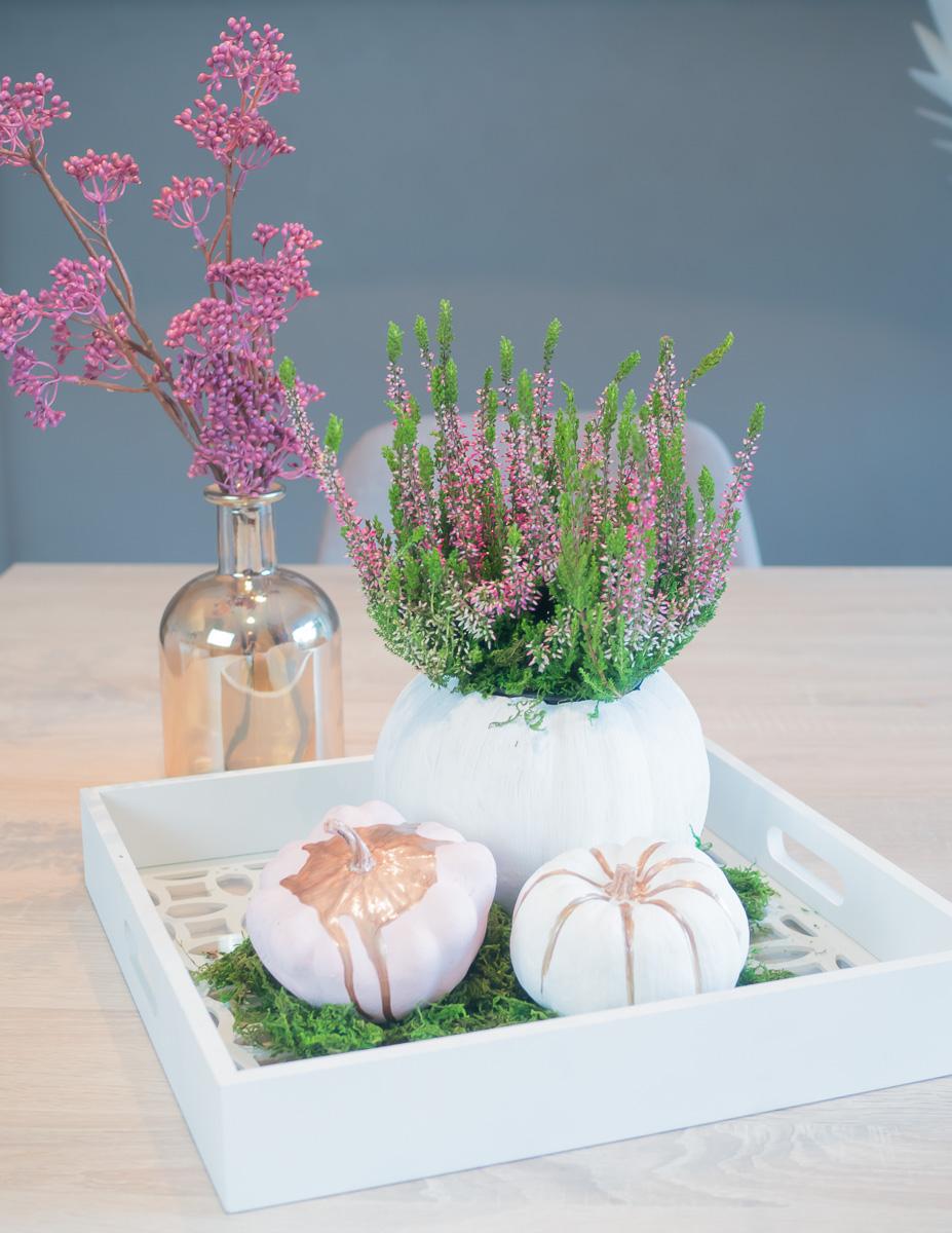 herbstliche dekoration kuerbis bepflanzen