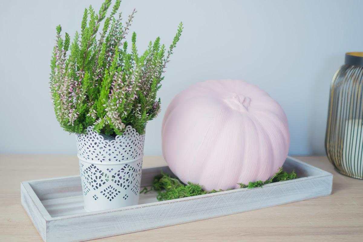 kuerbis herbstdeko in weiss und rosa