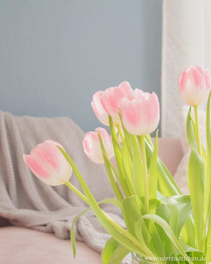 dekoration rosa tulpen rueckzugsort