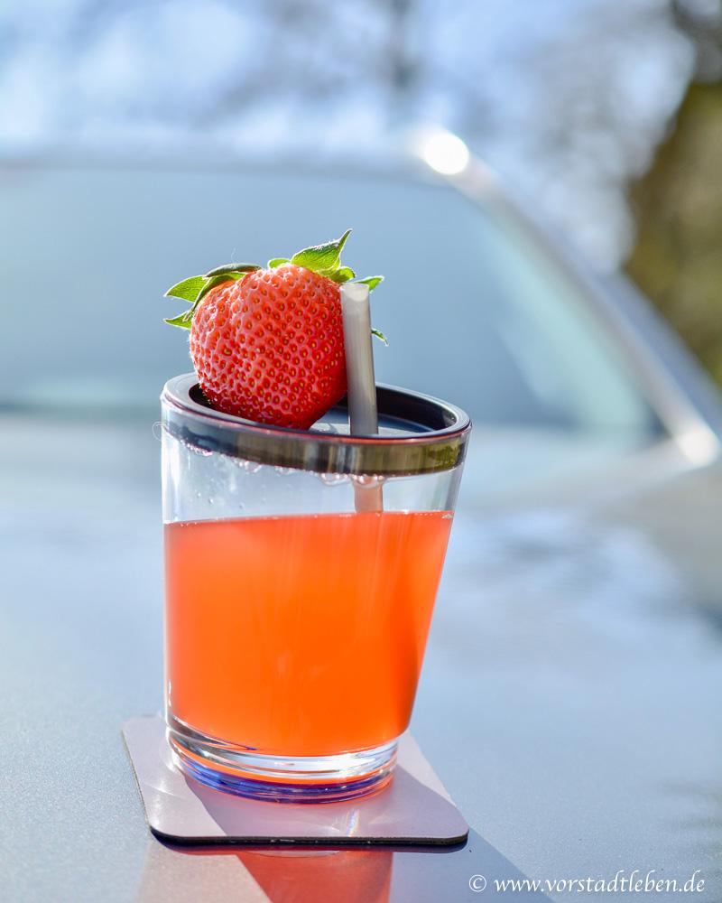 rhabarber erdbeer limo rezept ohne zucker silwy magnetic drinkwa