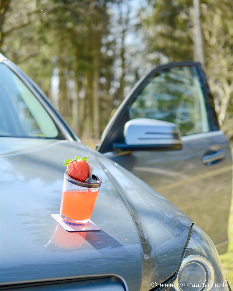 unterwegs mit auto pause trinken limo selbstgemacht silwy magnet