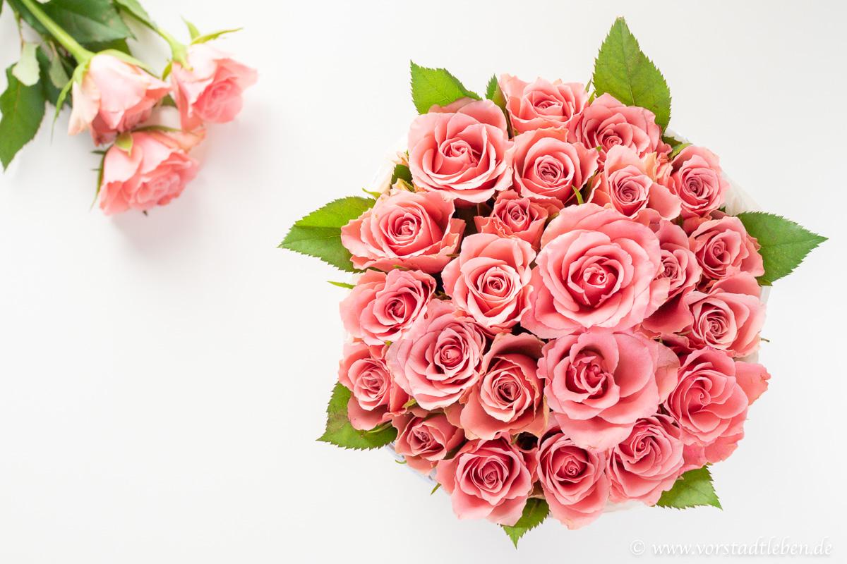 Blumenbox flowerbox DIY selbermachen anleitung