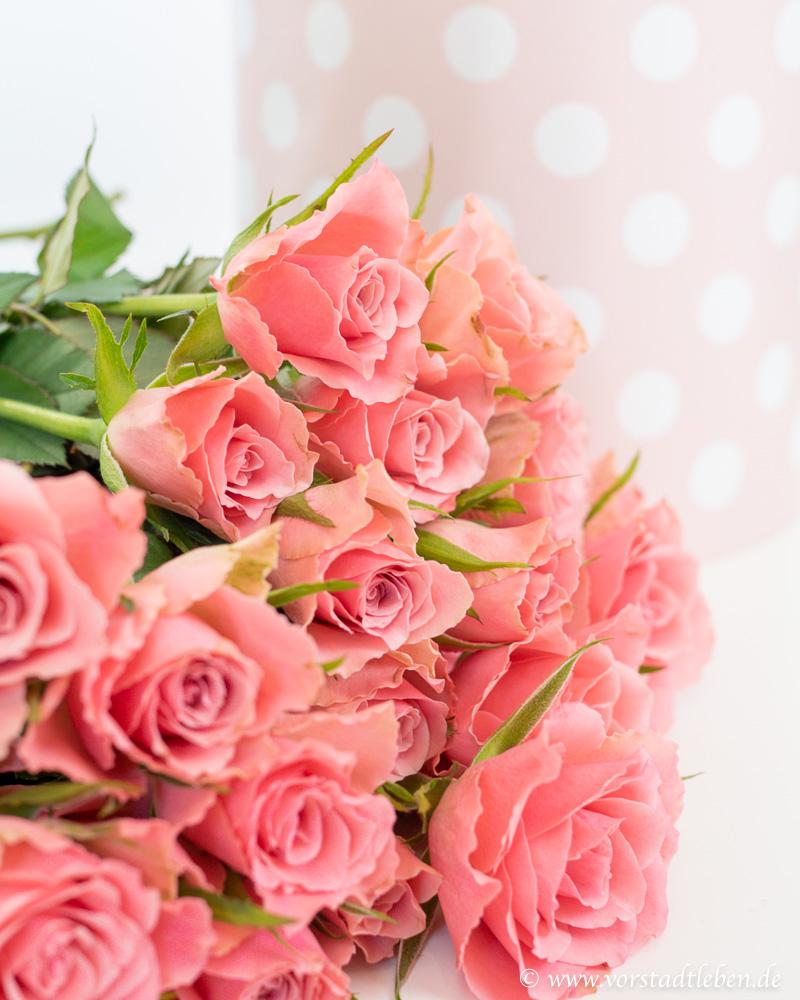 Flowerbox selbermachen rosen moosrosen