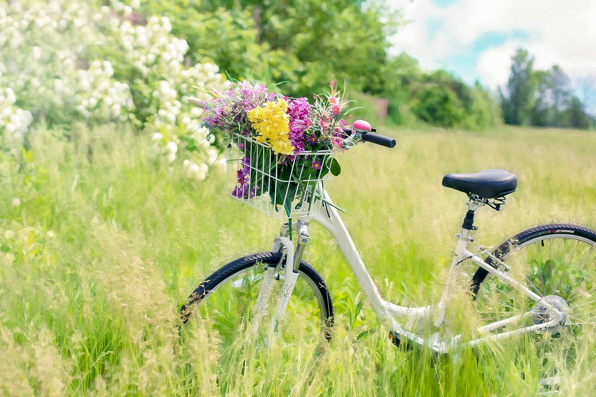 Fahrrad Sommer bucket Liste