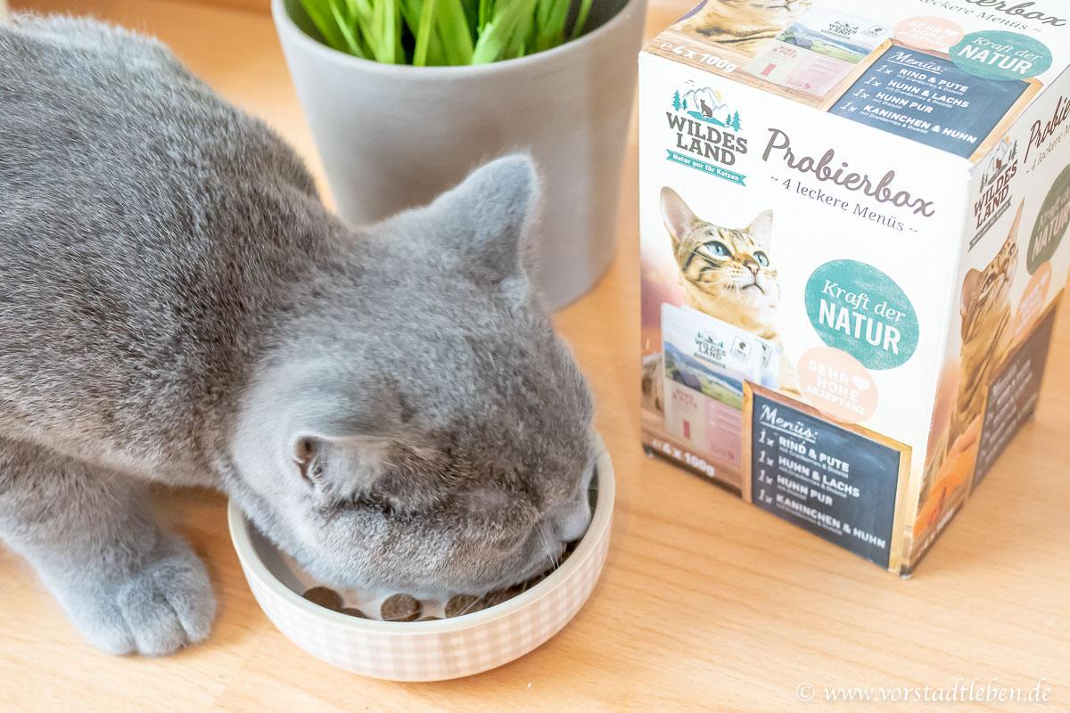 Katzenfutter Probierpaket Wildes Land