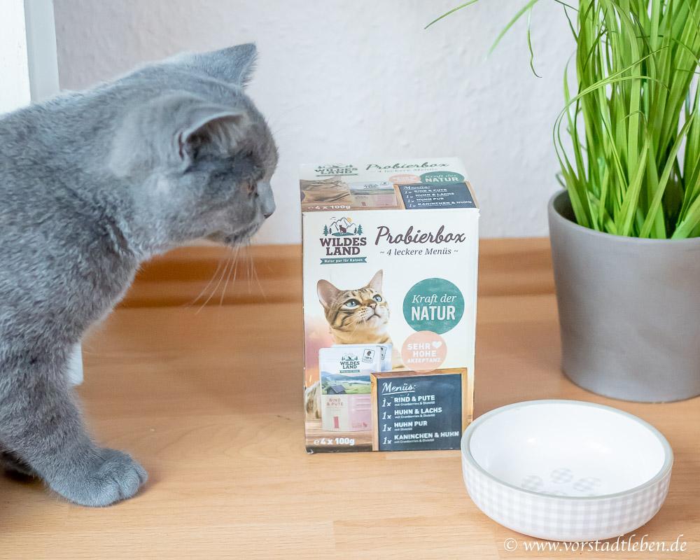 Wildes Land Katzenfutter Probierpaket