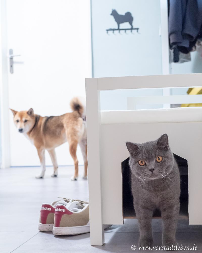 Katzenklo Katzentoilette verstecken Flur Sitzbank