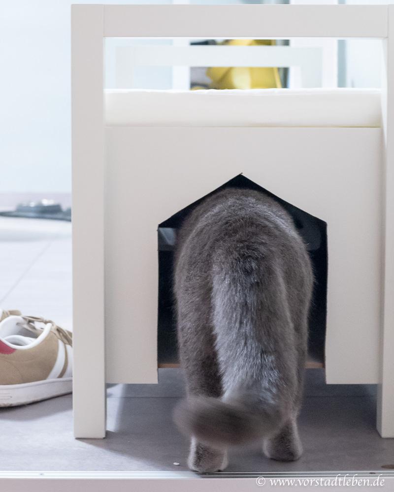 Katzenklo eingang sitzbank