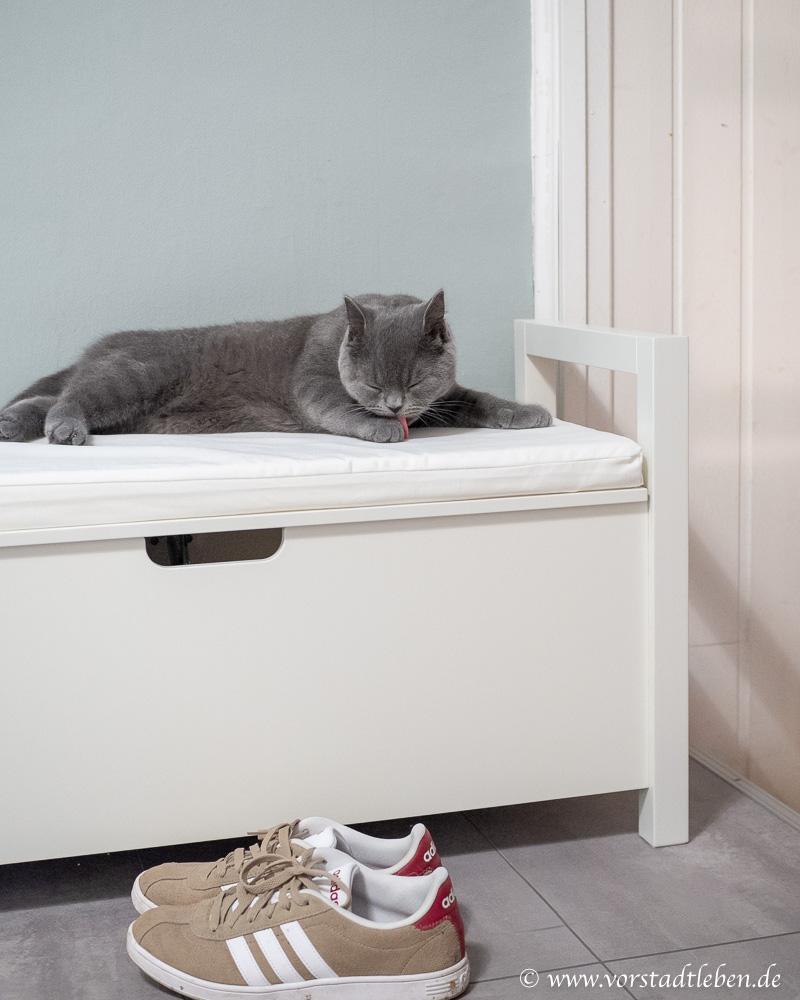 Katzenklo in der Sitzbank Flur