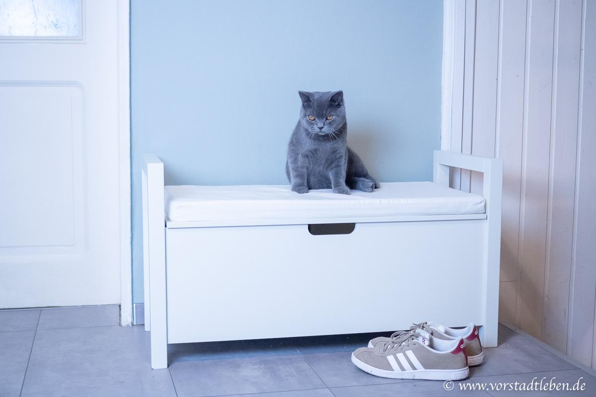 Katzentoilette Katzenklo klever versteckt