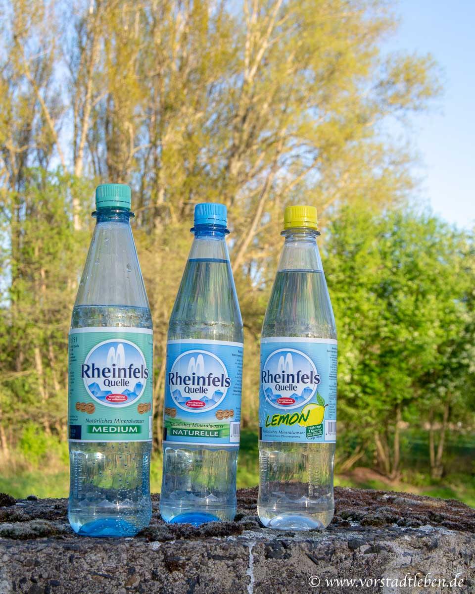 Rheinfels Quelle Natur