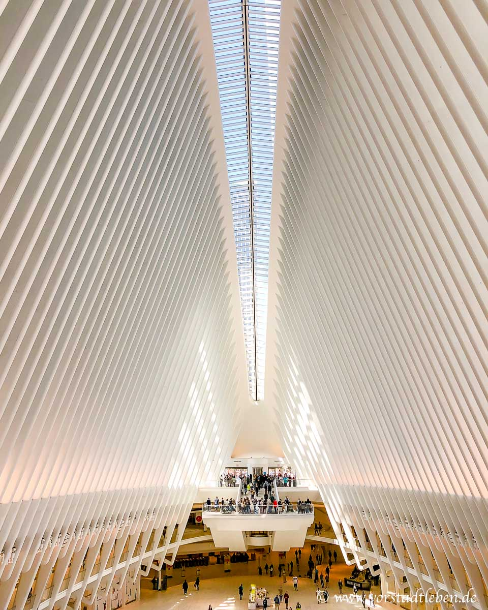 New York im Oculus