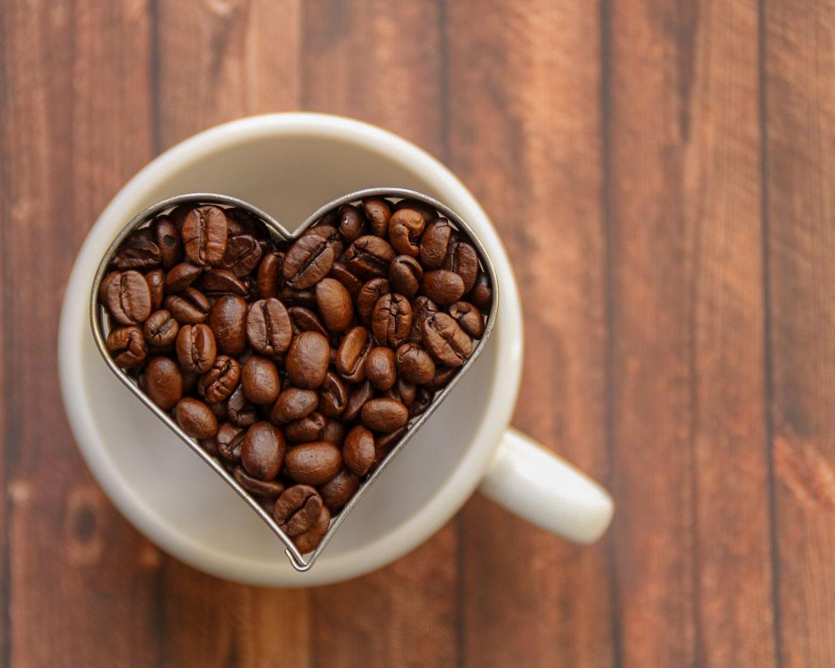 kaffee welche kaffeemaschine ist die richtige