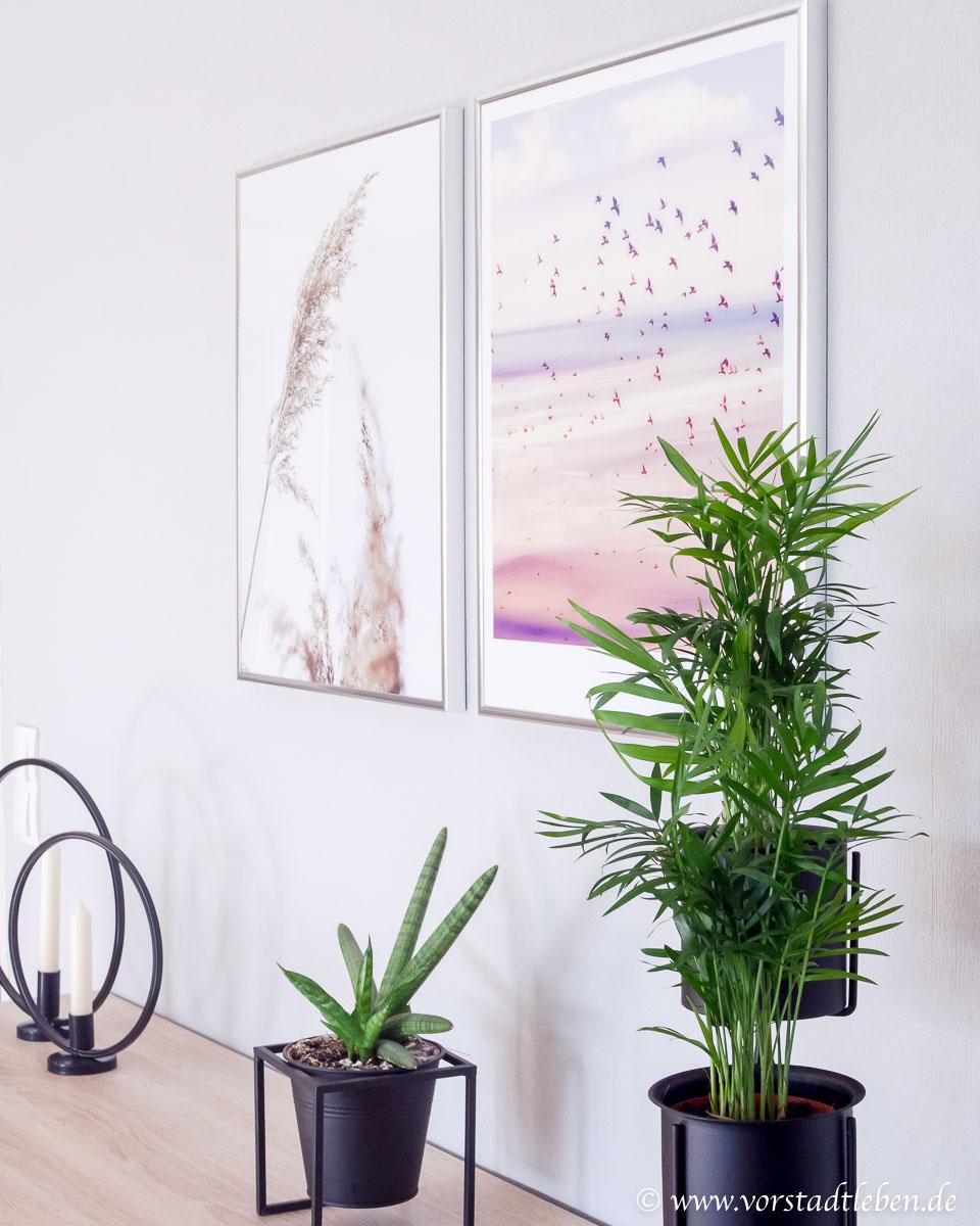 Poster Pflanzen Dekoration Sideboard