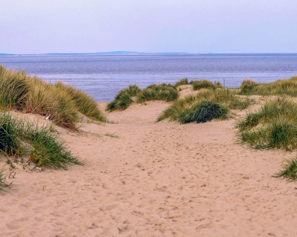 Strand duenen