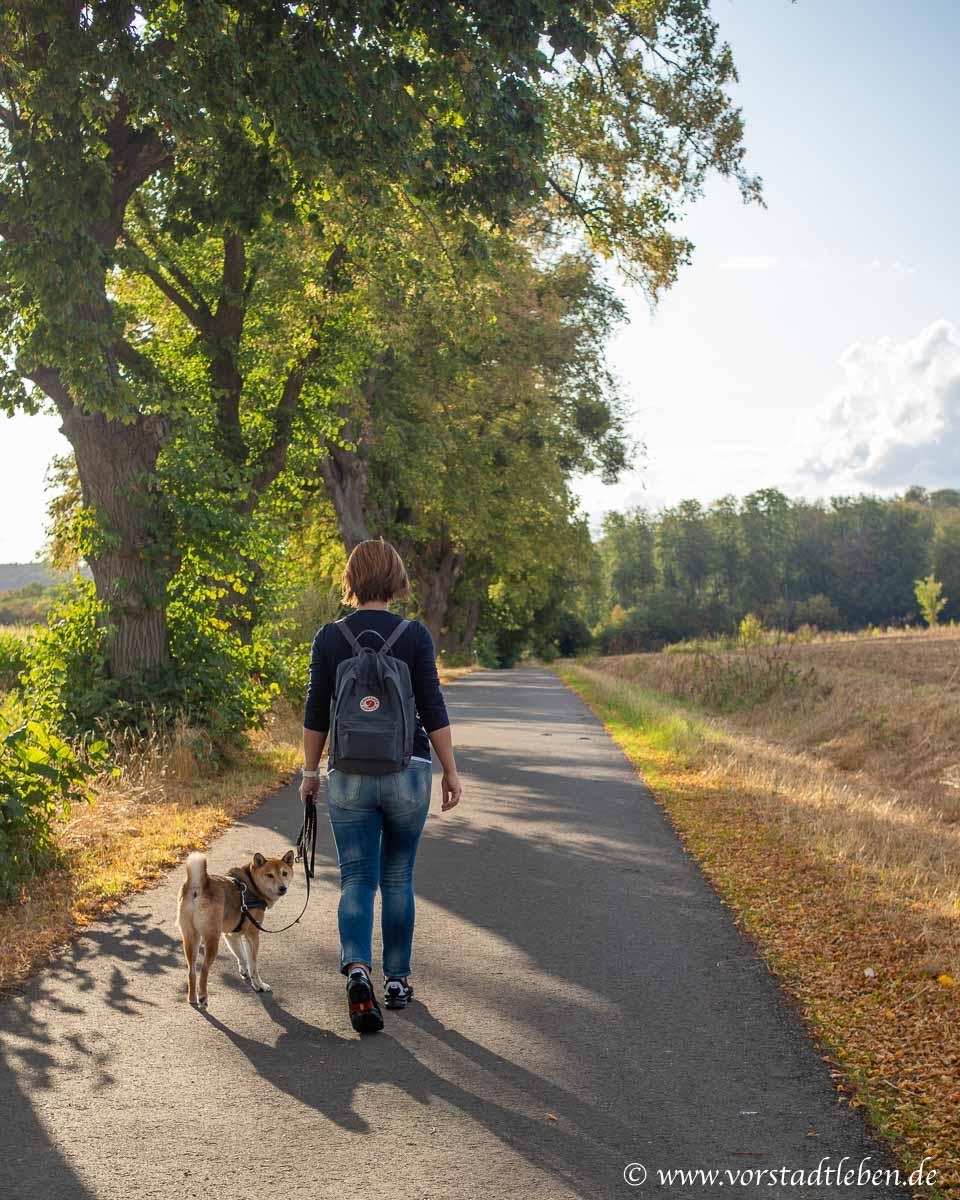 Spaziergang in der natur baer schuhe